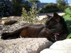 Enjoying her life