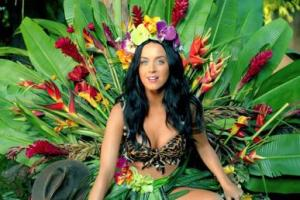 Katy Perry-Picture sited from Wikipedia