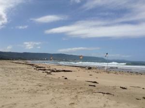 Bellambi Beach