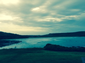 The Farm, Killalea State Park