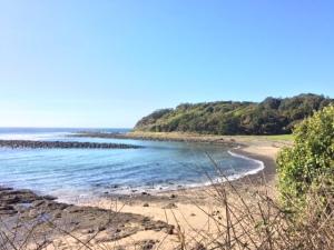 Bombo Headland ' Boneyard'